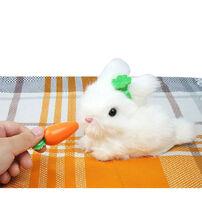 Mimi World 我的秘密小兔