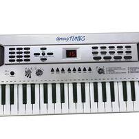 Groovy Tunes49鍵電子琴