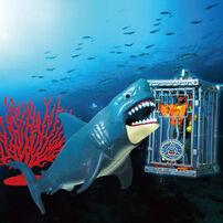 Wild Quest 鯊魚來了場景組