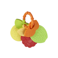 Top Tots天才萌寶 水果造型固齒器 - 隨機發貨