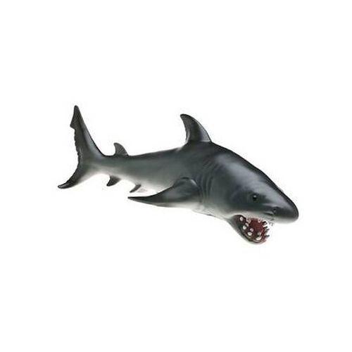 Animal Zone動物叢林 鯊魚